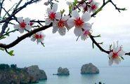 Праздник Дружбы «Крымская весна»