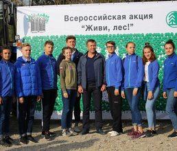 Артековцы присоединились к всероссийской акции «Живи лес!»