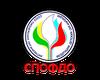Союз пионерских организаций – федерация детских организаций СПО-ФДО
